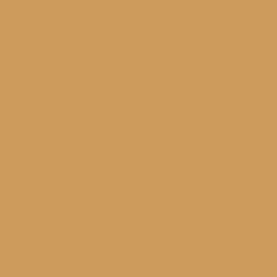 CeramicsSolutions_0018_Medium-Ochre